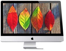 Jesenje čišćenje sajta Vaše firme